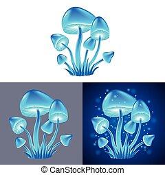 funghi, vettore, magia, isolato