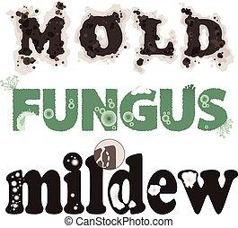 fungo, molde, mofo
