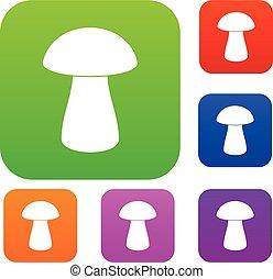 Fungus boletus set color collection