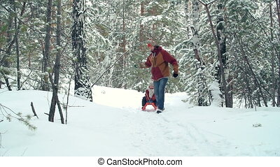 Funny Accident - Slow motion of man pulling sleds with his...