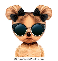 Funny adorable doggy girl with glamour sunglasses, isolated...