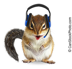 Funny animal call center operator, chipmunk with phone headset