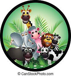 funny animal cartoon collection