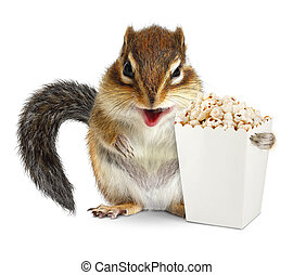Funny animal chipmunk with blank popcorn bucket isolated on white