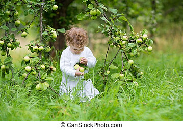 Funny baby girl picking apples in an autumn garden