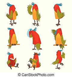 Funny Bird Cartoon Character in Different Situations Set, Cute Birdie with Bright Colorful Feathers and Tuft Vector Illustration