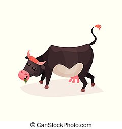 Funny black and white milk cow eating grass cartoon vector Illustration