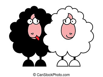 funny black and white sheeps - vector illustration