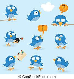 Funny blue birds