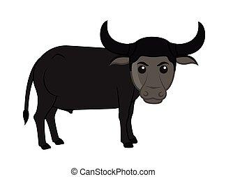 Funny Cartoon Buffalo