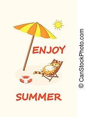funny cartoon cat on the beach with sun