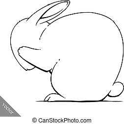 funny cartoon cute rabbit illustration