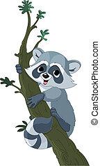 Illustration of cute funny cartoon raccoon climbing on the tree