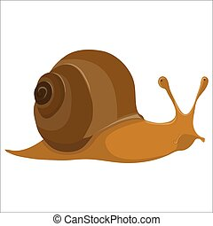 Funny cartoon snail on white background - vector illustration