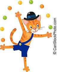 Funny cat juggler