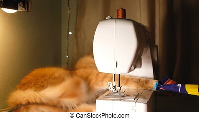 Funny cat plays with a rag around the sewing machine