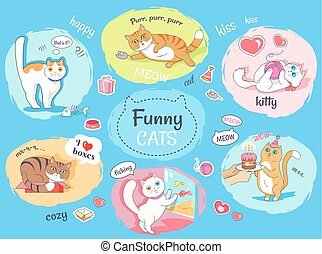 Funny Cats Poster with Images of Everyday Life