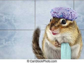 Funny chipmunk bathing - Funny chipmunk with towel bathing