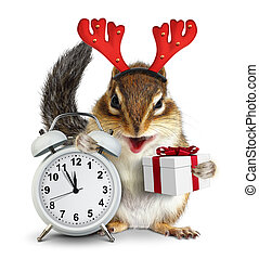 Funny chipmunk with christmas gift box and deer horns on white