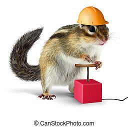 Funny chipmunk with detonator isolated on white background