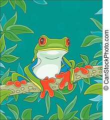 Funny colorful tropical frog on a tree branch