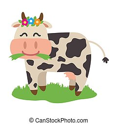 Funny cow chewing grass on a white background.