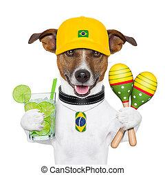 funny brazilian dog with caipirinha and rattle shakers