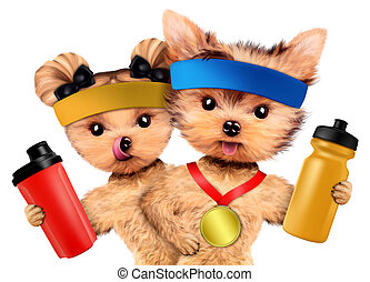 Funny dog holding shaker and water bottle. Concept of sport...