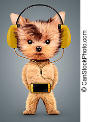 Funny dog listening to music on headphones