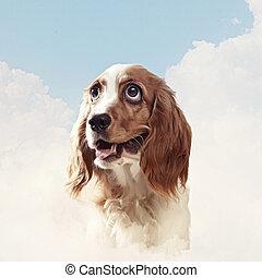 Funny dog portrait on a light background. Collage.