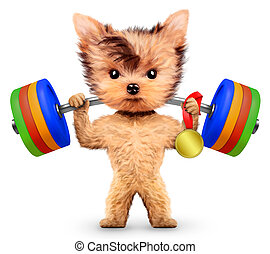Funny dog training with barbell and hold medal. Concept of...