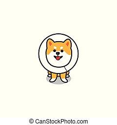 Funny dog wearing elizabethan collar, puppy cartoon icon, vector illustration