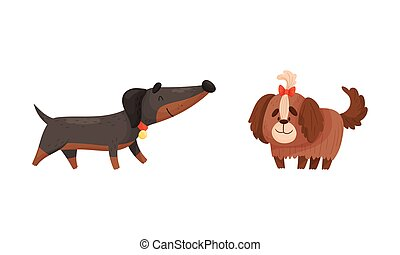 Funny Dog with Collar as Four-legged Friend and Domestic Pet Vector Set. Furry Playful Puppy as Home Animal with Friendly Snout Concept