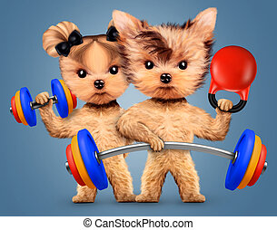 Funny dogs training with barbell and dumbbell. Concept of...