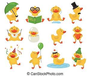 Funny duckling set