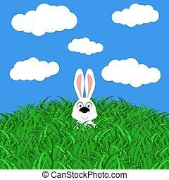 Funny easter rabbit on white background