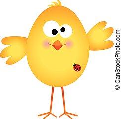 Funny egg chick cartoon