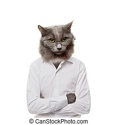 Funny fluffy cat in a glasses. collage on a white