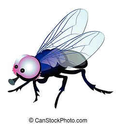 Funny fly with big eyes isolated on white background. Vector cartoon close-up illustration.