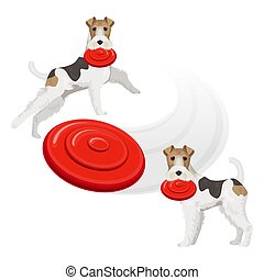 Funny fox terrier dog with red frisbee in teeth - Funny Fox...