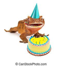 Funny Gecko Lizard Eating Birthday Cake