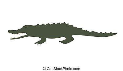 Funny green alligator. Flat vector illustration. Isolated on white background