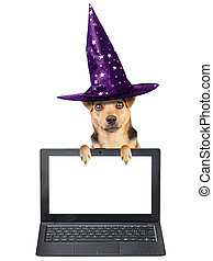 Funny Halloween dog witch hat laptop notebook blank screen isolated