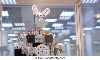 Funny handmade robot rabbit dancing at technology...