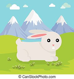 Funny Hare Illustration
