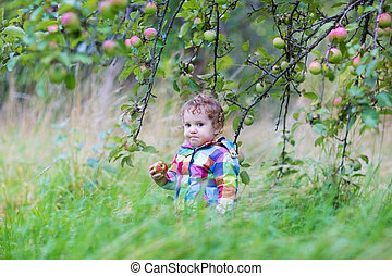 Funny little baby girl eating an apple in an autumn garden on a