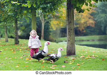Funny little baby girl playing with wild ducks in a beautiful au