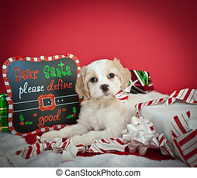 Dear Santa - Funny little Christmas puppy tearing up a...