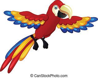 funny macaw cartoon