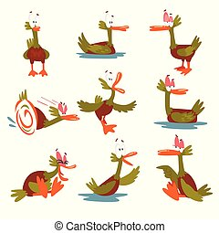 Funny Male Mallard Duck Set, Comical Bird Cartoon Character in Different Situations Vector Illustration